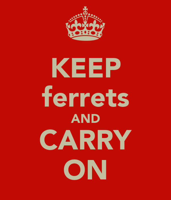 KEEP ferrets AND CARRY ON