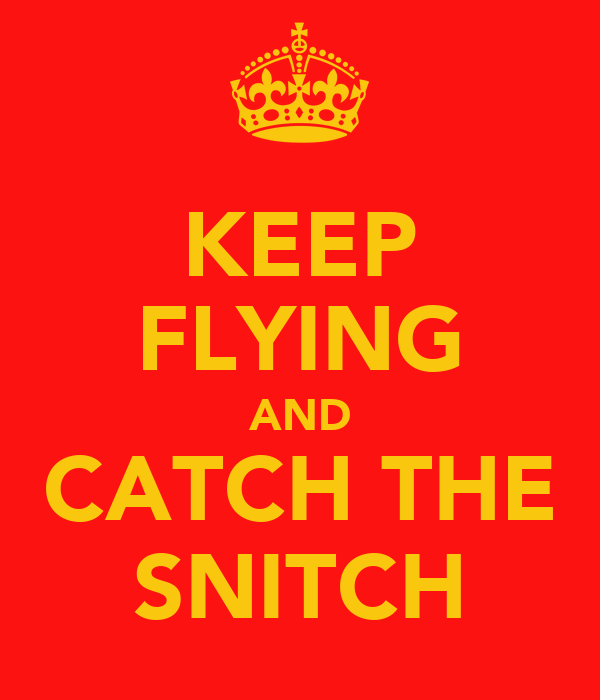 KEEP FLYING AND CATCH THE SNITCH