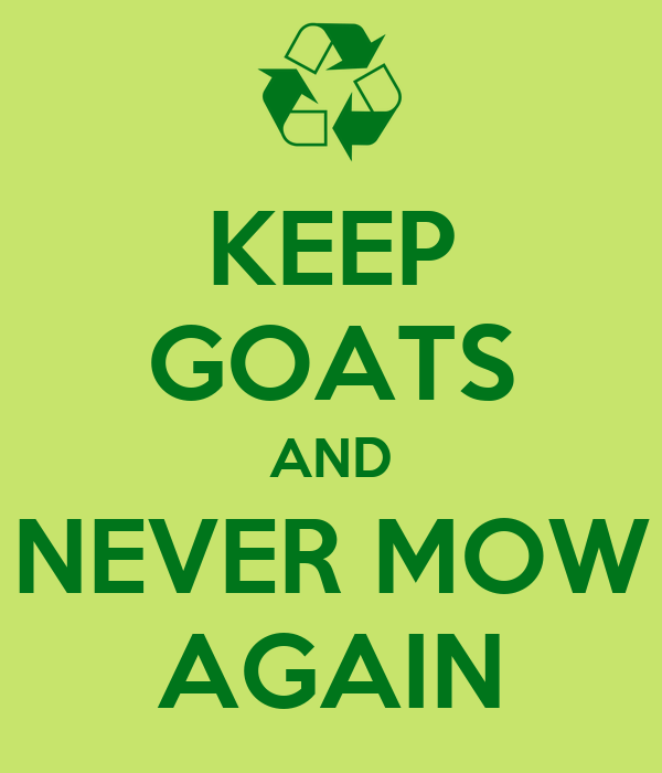 KEEP GOATS AND NEVER MOW AGAIN