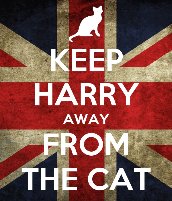KEEP HARRY AWAY FROM THE CAT