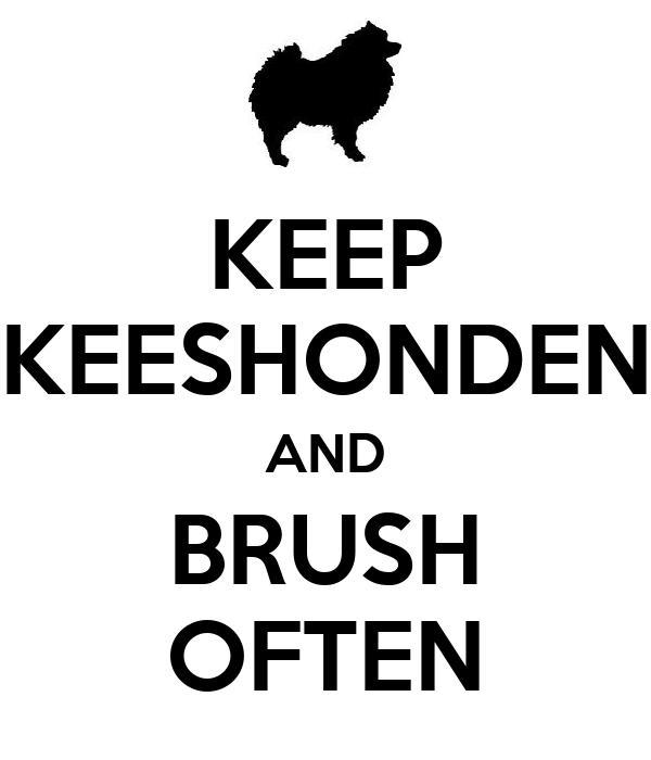 KEEP KEESHONDEN AND BRUSH OFTEN