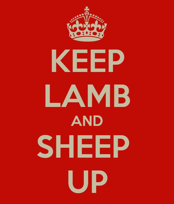 KEEP LAMB AND SHEEP  UP