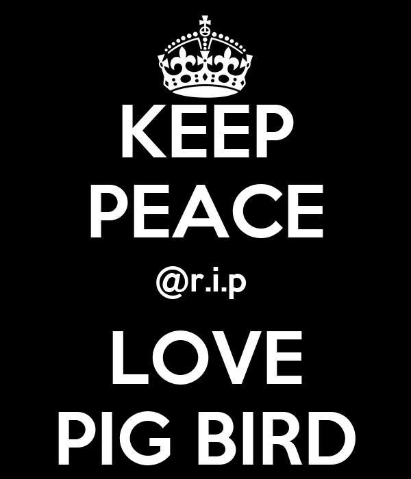 KEEP PEACE @r.i.p  LOVE PIG BIRD
