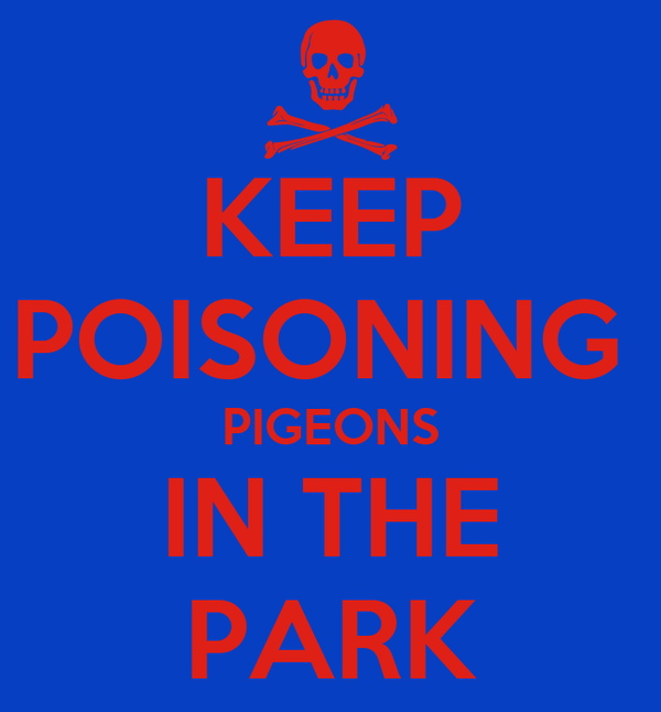 KEEP POISONING  PIGEONS IN THE PARK