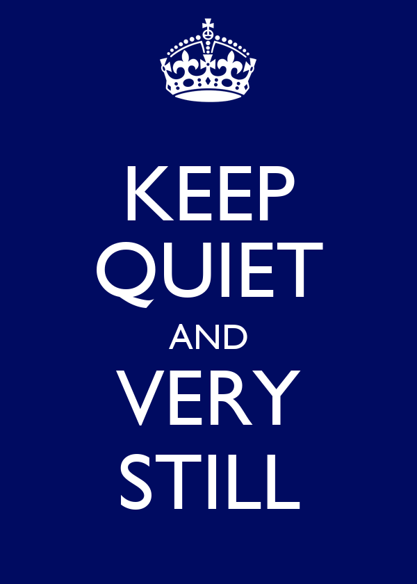 KEEP QUIET AND VERY STILL