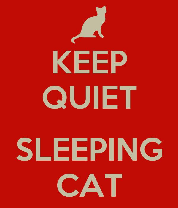 KEEP QUIET  SLEEPING CAT