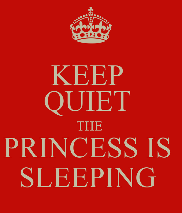 KEEP  QUIET  THE  PRINCESS IS  SLEEPING