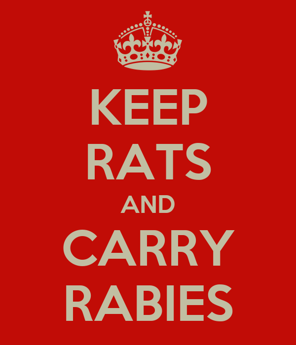 KEEP RATS AND CARRY RABIES