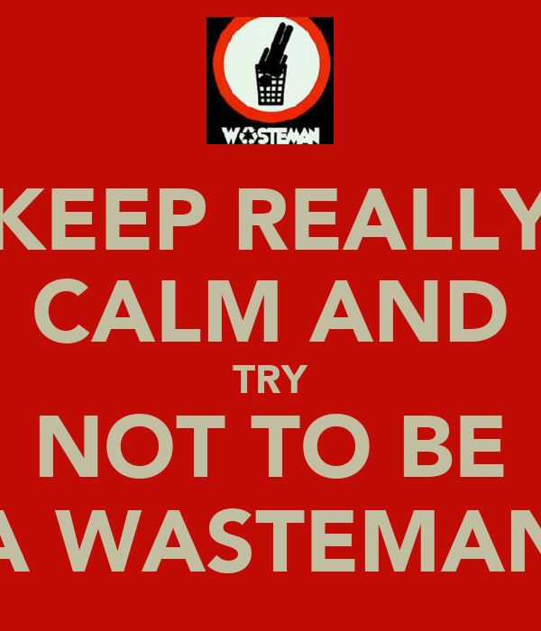 KEEP REALLY CALM AND TRY NOT TO BE A WASTEMAN