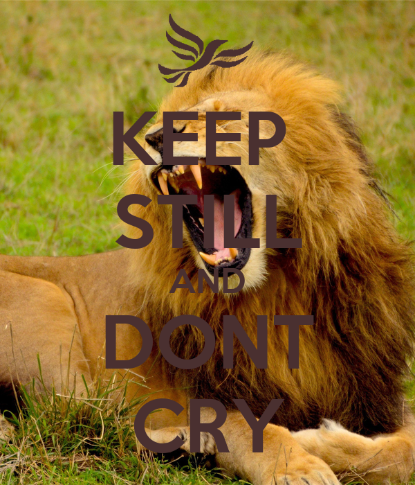 KEEP  STILL AND DONT CRY