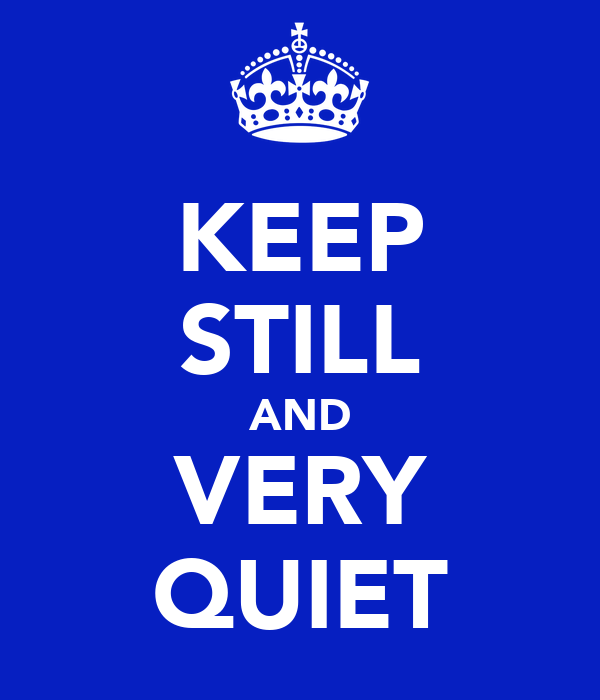 KEEP STILL AND VERY QUIET