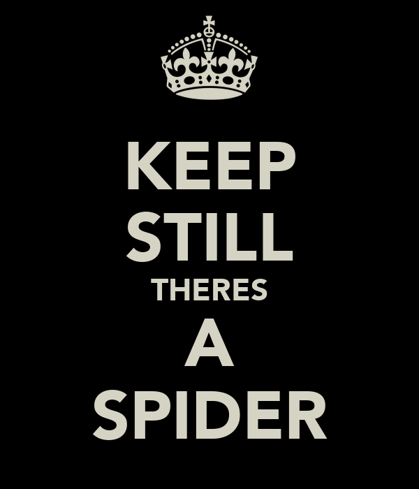 KEEP STILL THERES A SPIDER