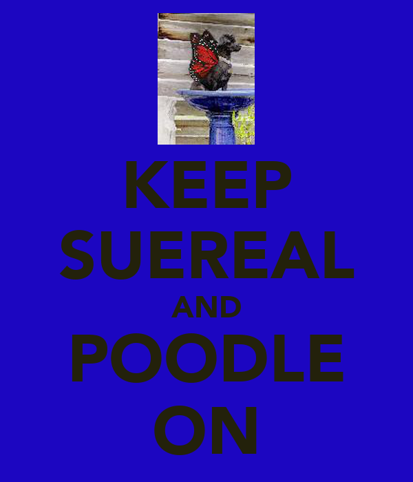 KEEP SUEREAL AND POODLE ON