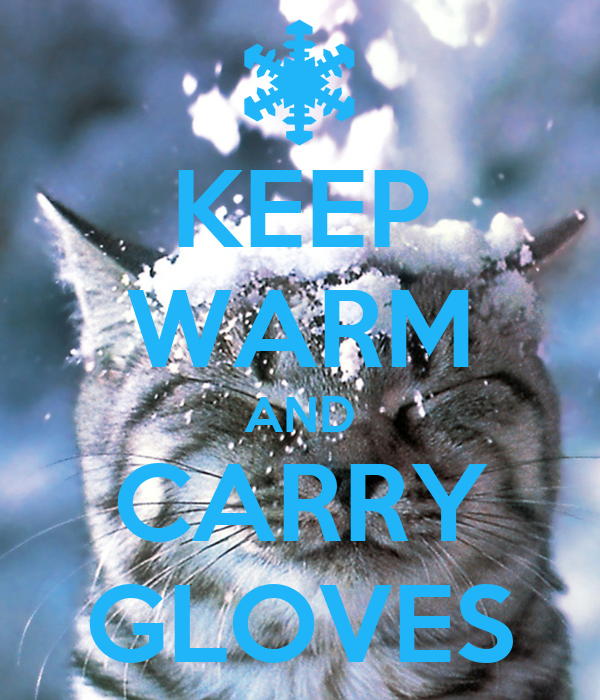 KEEP WARM AND CARRY GLOVES