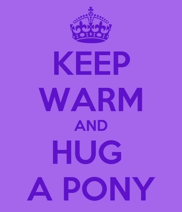KEEP WARM AND HUG  A PONY