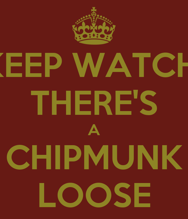 KEEP WATCH! THERE'S A CHIPMUNK LOOSE