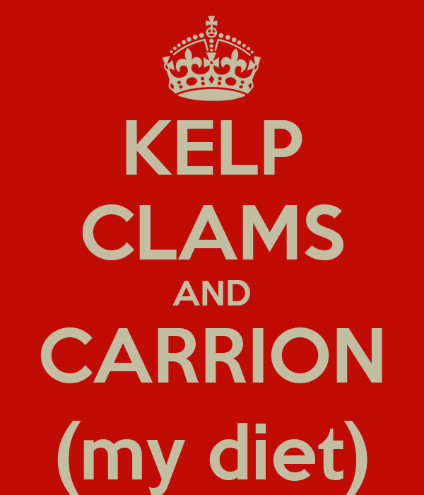 KELP CLAMS AND CARRION (my diet)
