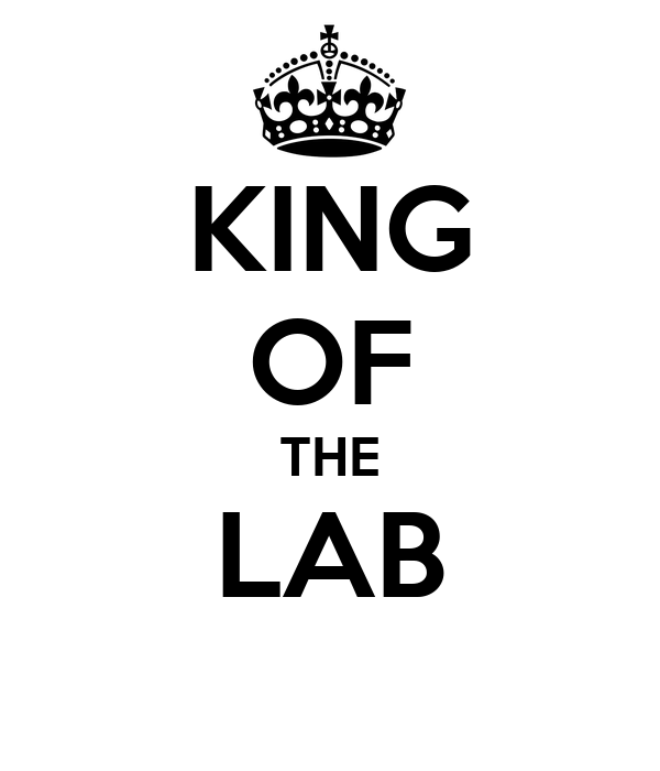 KING OF THE LAB
