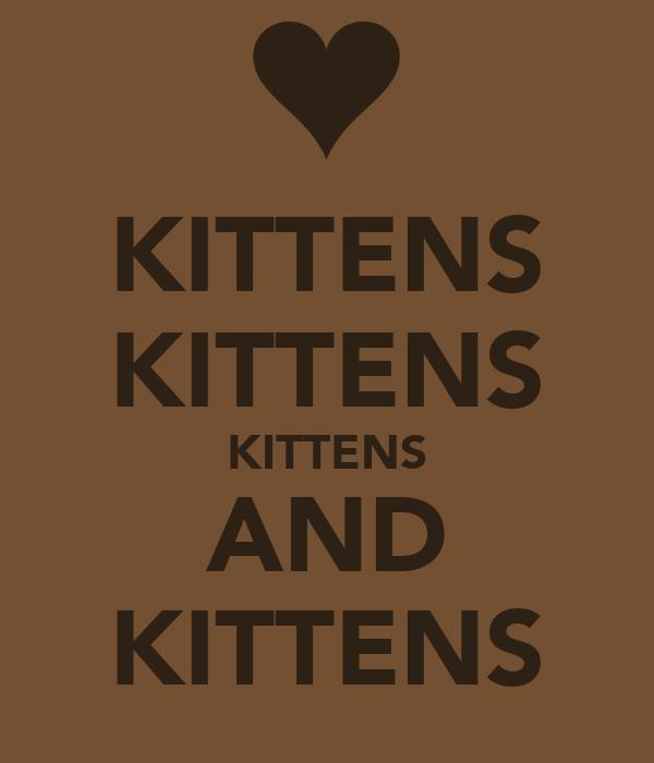KITTENS KITTENS KITTENS AND KITTENS