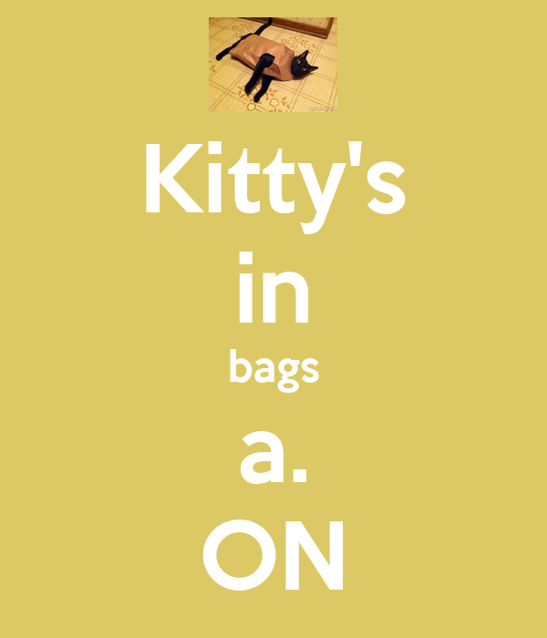 Kitty's in bags a. ON