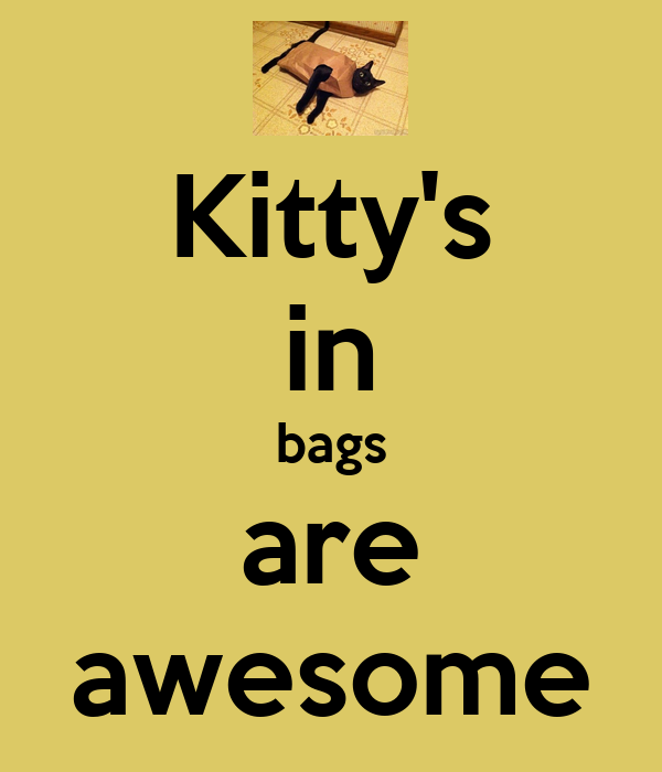 Kitty's in bags are awesome