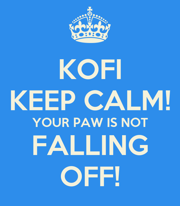 KOFI KEEP CALM! YOUR PAW IS NOT FALLING OFF!