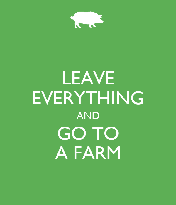 LEAVE EVERYTHING AND GO TO A FARM