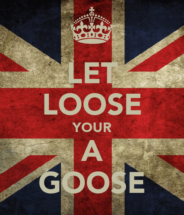 LET LOOSE YOUR A GOOSE