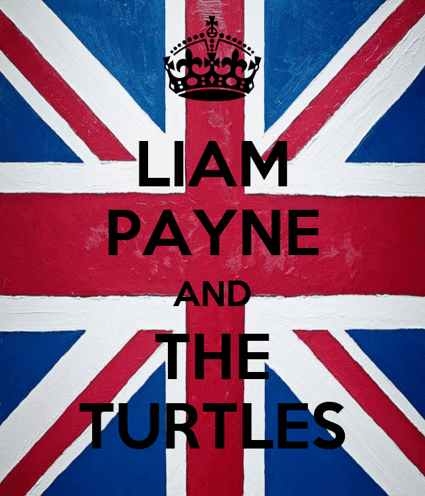 LIAM PAYNE AND THE TURTLES