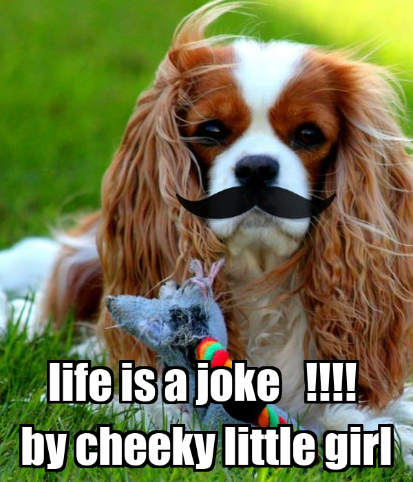 life is a joke by cheeky little girl poster riri. Black Bedroom Furniture Sets. Home Design Ideas