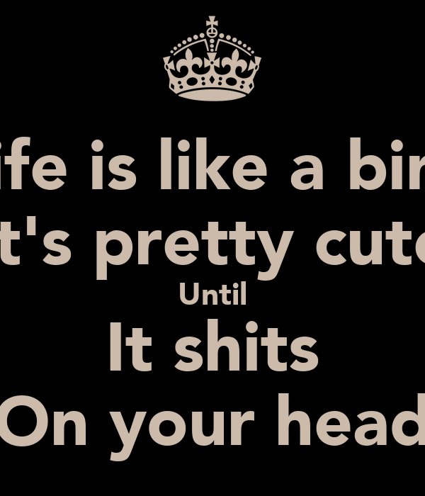 Life is like a bird It's pretty cute Until It shits On your head