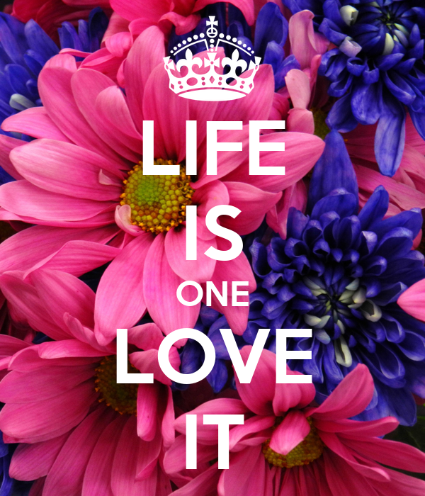 LIFE IS ONE LOVE IT