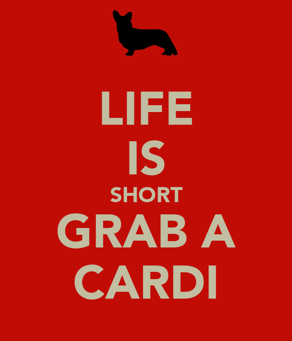 LIFE IS SHORT GRAB A CARDI