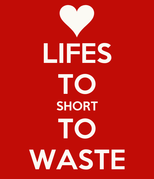 LIFES TO SHORT TO WASTE