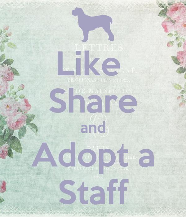Like  Share and Adopt a Staff