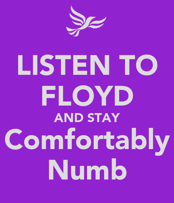 LISTEN TO FLOYD AND STAY Comfortably Numb