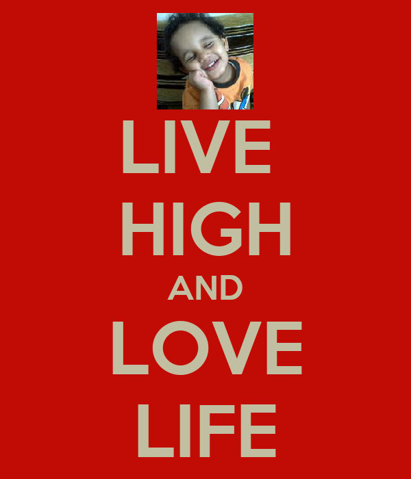 LIVE  HIGH AND LOVE LIFE