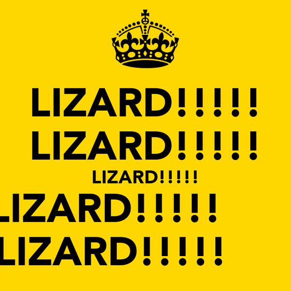LIZARD!!!!! LIZARD!!!!! LIZARD!!!!! LIZARD!!!!!        LIZARD!!!!!