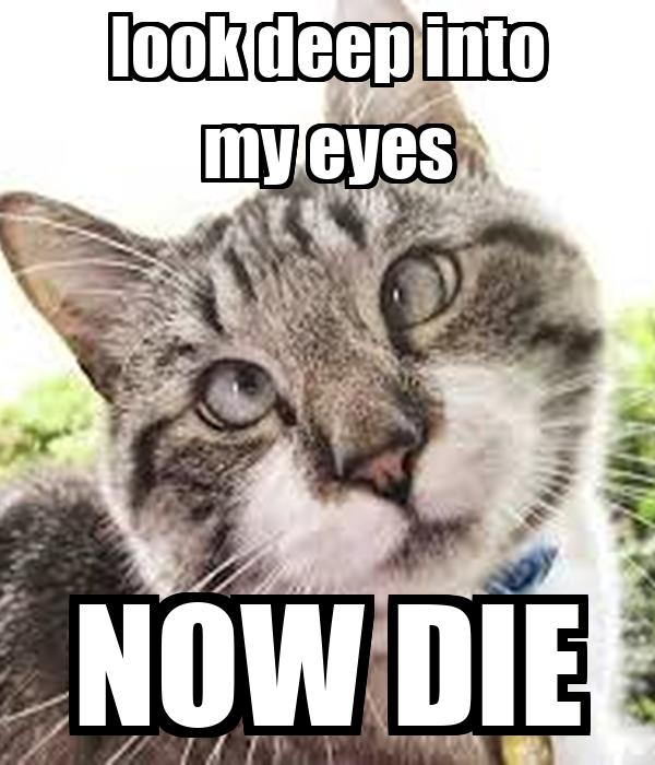 look deep into my eyes NOW DIE