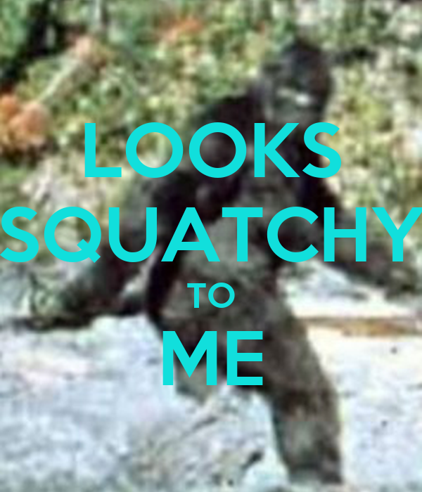 LOOKS SQUATCHY TO ME