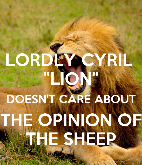 """LORDLY CYRIL  """"LION"""" DOESN'T CARE ABOUT THE OPINION OF THE SHEEP"""