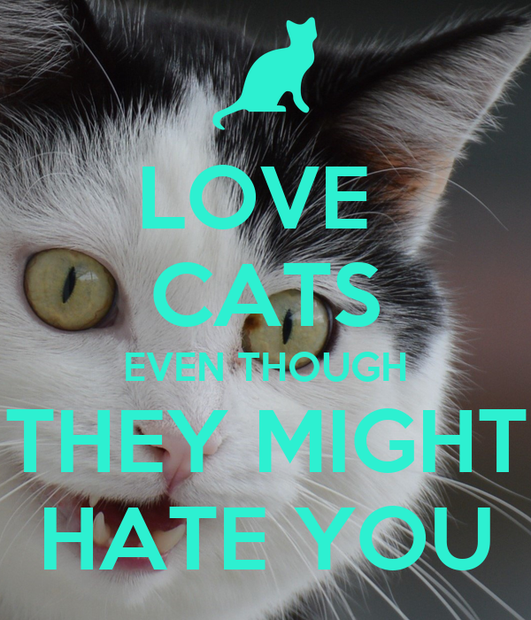 LOVE  CATS EVEN THOUGH THEY MIGHT HATE YOU