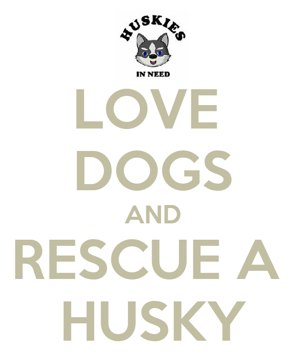 LOVE  DOGS AND RESCUE A  HUSKY