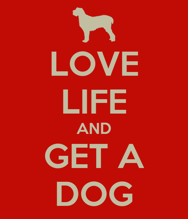 LOVE LIFE AND GET A DOG