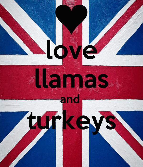 love llamas and  turkeys