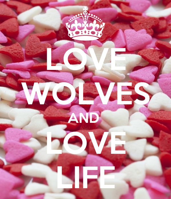 LOVE WOLVES AND  LOVE LIFE