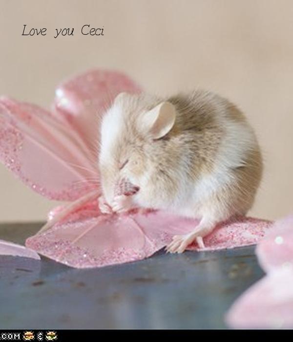 Love you Ceci