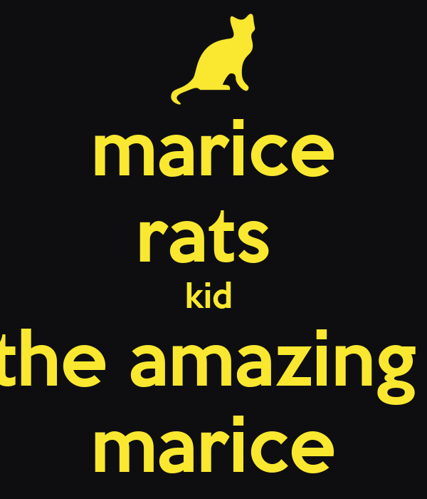marice rats  kid  the amazing  marice