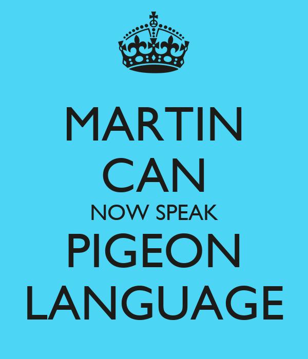 MARTIN CAN NOW SPEAK PIGEON LANGUAGE