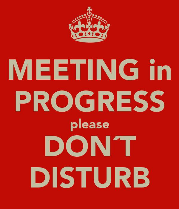 MEETING in PROGRESS please DON´T DISTURB